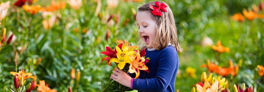 Bon Dimanche Faire-un-bouquet-d-ete-avec-les-fleurs-du-jardin